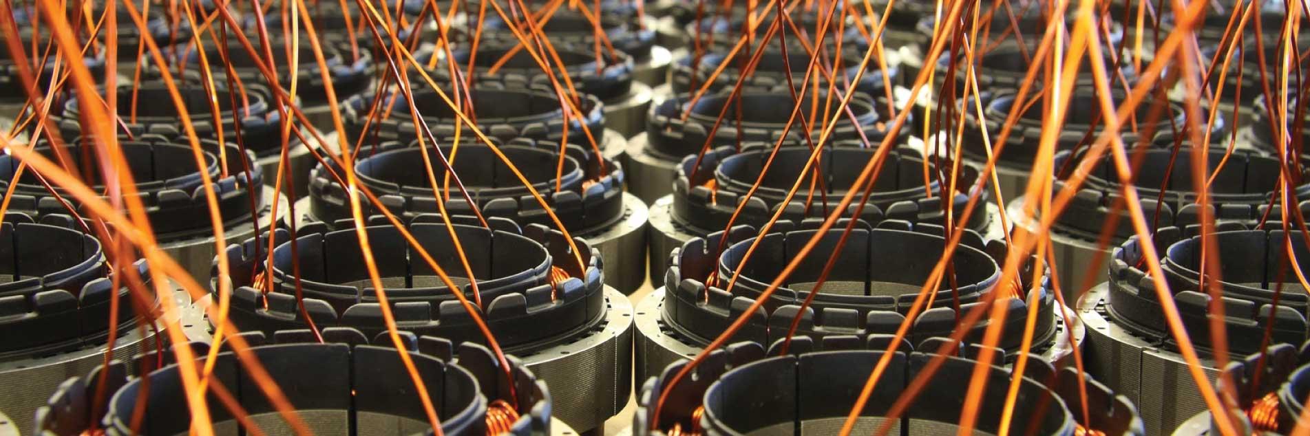 המנועים של חברת Roger Technology מבוססים על מנוע דיגטלי תלת פאזי ללא מברשות בעל שדה מגנטי קבוע.